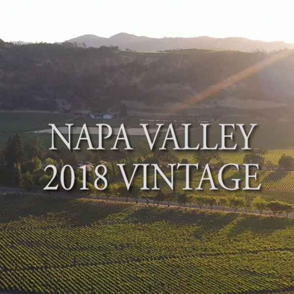 2018 vintage overview for Napa Valley Cabernet, Merlot and Red Blends