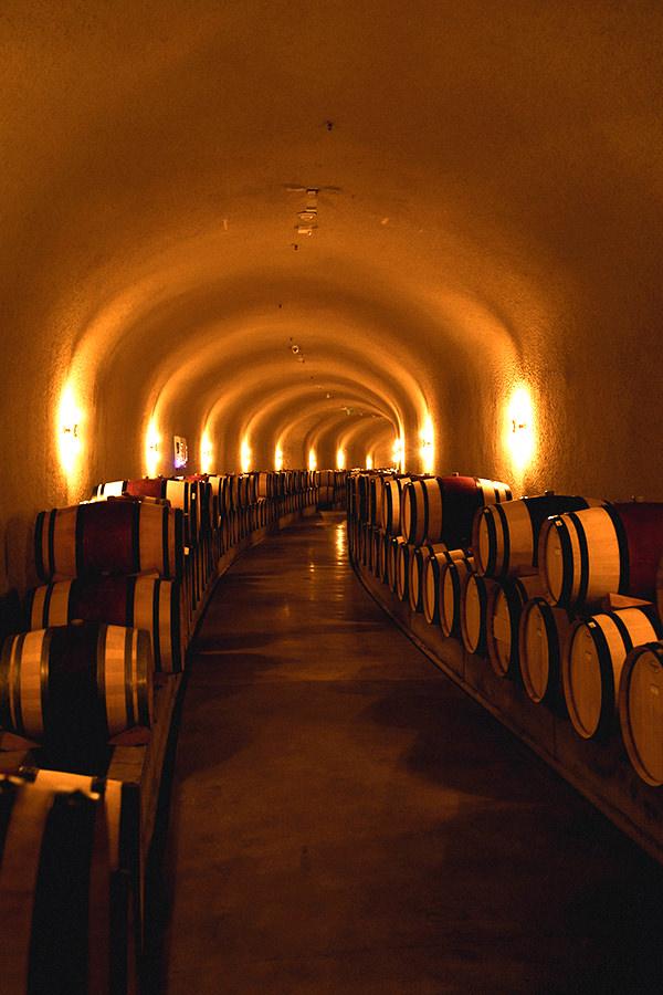 barrels line the walls of a wine cave