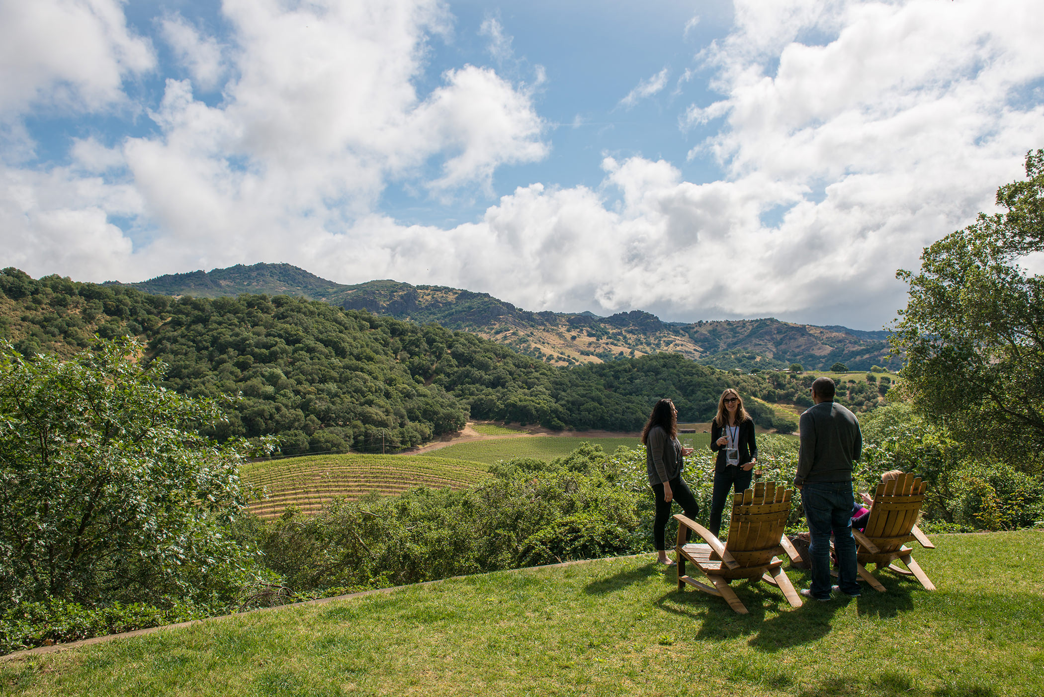 a small group of four people stand on a lawn overlooking a dramatic, mountainous vista in Napa Valley